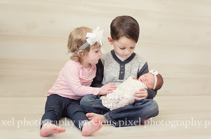 Precious Pixel Photographer, South East Michigan Family Photographer