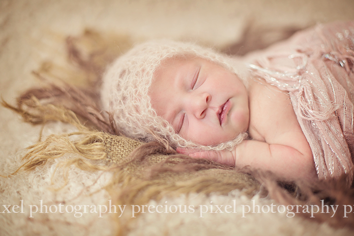 Precious Pixel Photographer MI Natural Light Photographer » Michigan Baby, Child, and Family Photographer