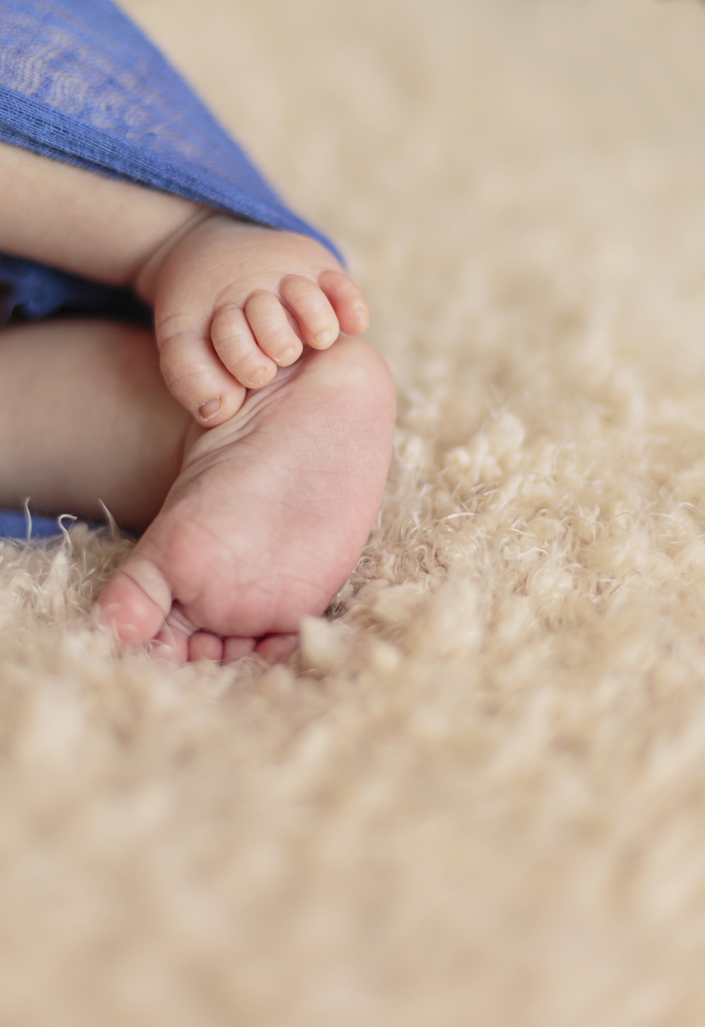 newborn photographer, Michigan, precious pixel photography, baby photo, toes, how to photograph