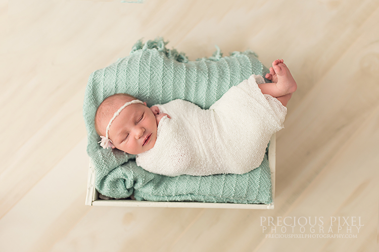 newborn photography, Detroit MI family photographer, maternity photo, baby photo, Precious Pixel Photography, Rose Jesky