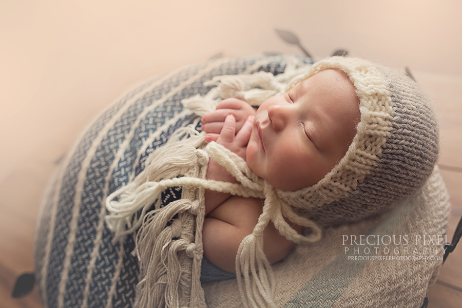 newborn photographer in michigan, Detroit MI area newborn photographer, baby pictures, newborn, Precious Pixel Photography, Rose Jesky, Family photography, ann arbor newborn photographer 1
