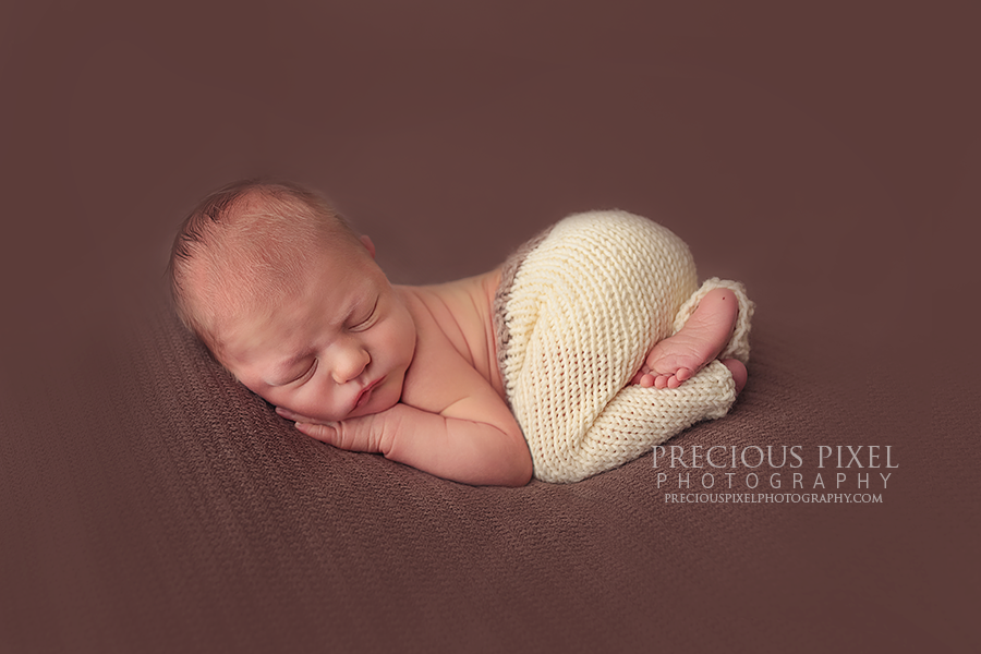 Posted in newborn photography tags royal oak newborn photographer farmington hills newbon photography