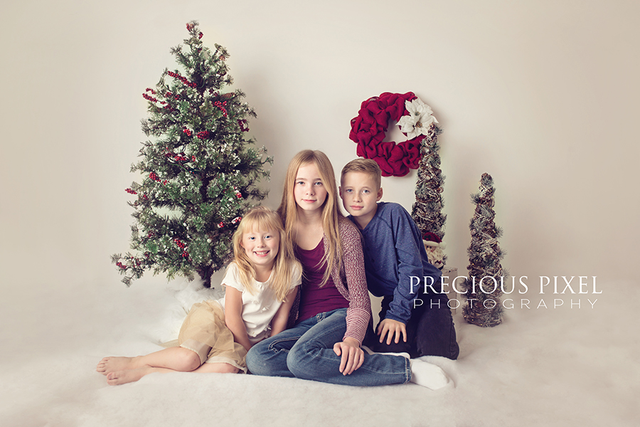 Christmas Mini session, Detroit MI Photographer, Child photography, siblings, Precious Pixel Photography, Rose Jesky