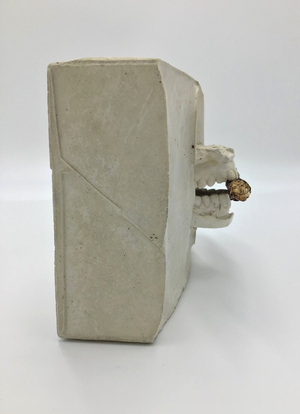 "Bite,  wood and plaster 5"" high X 8.5"" long X 3.5"" wide (2019)"