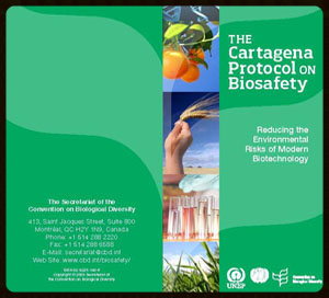 Brochure for the United Nations Environmental Convention on Biological Diversity's Cartagena Protocol on Biosafety.