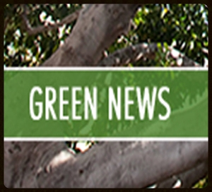 A newsletter to help Enterprise Green Communities stay connected with its partners.