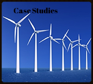 Visual based case studies on green construction practices created for a sustainability consulting firm.