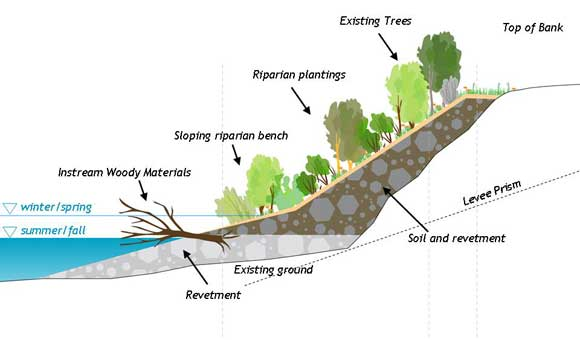 riverbank erosion understanding approaches Technical assistance consultant's report understanding of the physical the emerging holistic approach towards flood and riverbank erosion management.