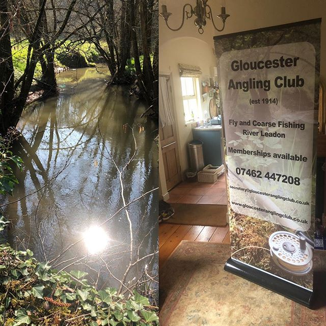 New trout season. New memberships available fishing on the tranquil River Leadon in hidden Gloucestershire. £57 buys you a piece of paradise for a year! #trout #wildbrowntrout #wildbrowntroutclub #wildbrowntroutfishing #leadon #paradise #hiddengloucestershire #tranquil