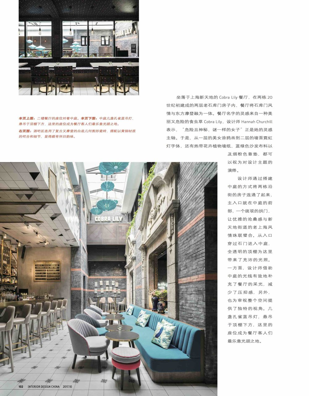 Interior Design China Oct 2017_Cobra Lily_3.jpg