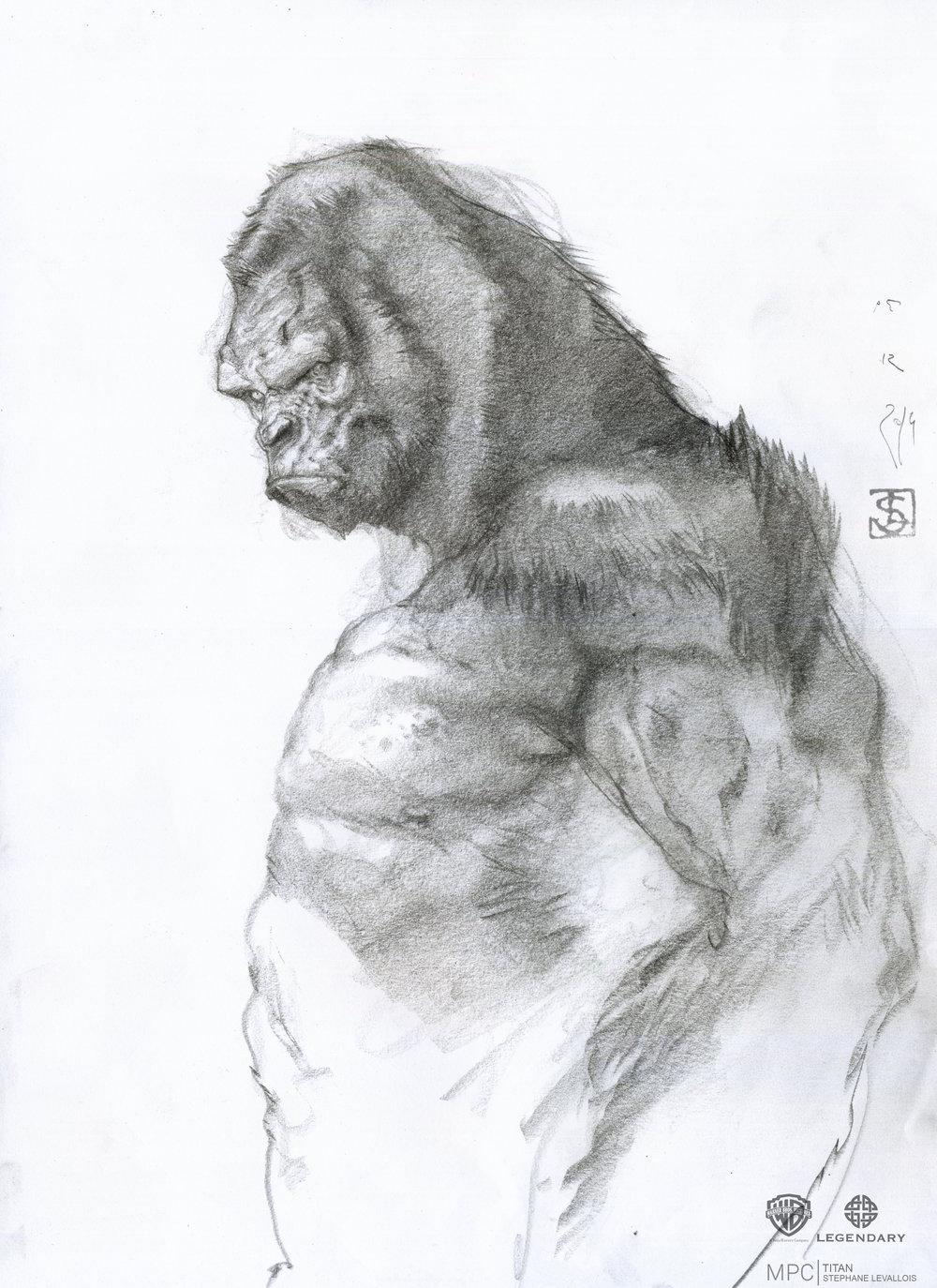 TITAN_Kong_SL01.1002.jpg