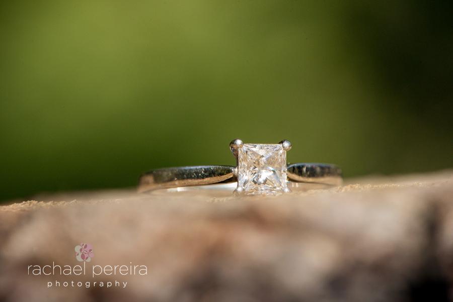 hertfordshire-engagement-shoot_0001.jpg