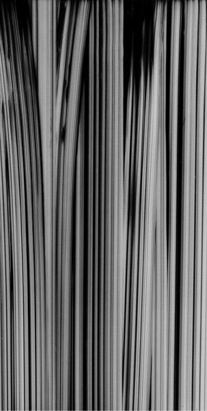 VERTICAL-(black).jpg