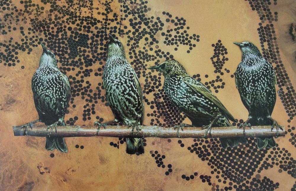 birdsfarmland_print.jpg