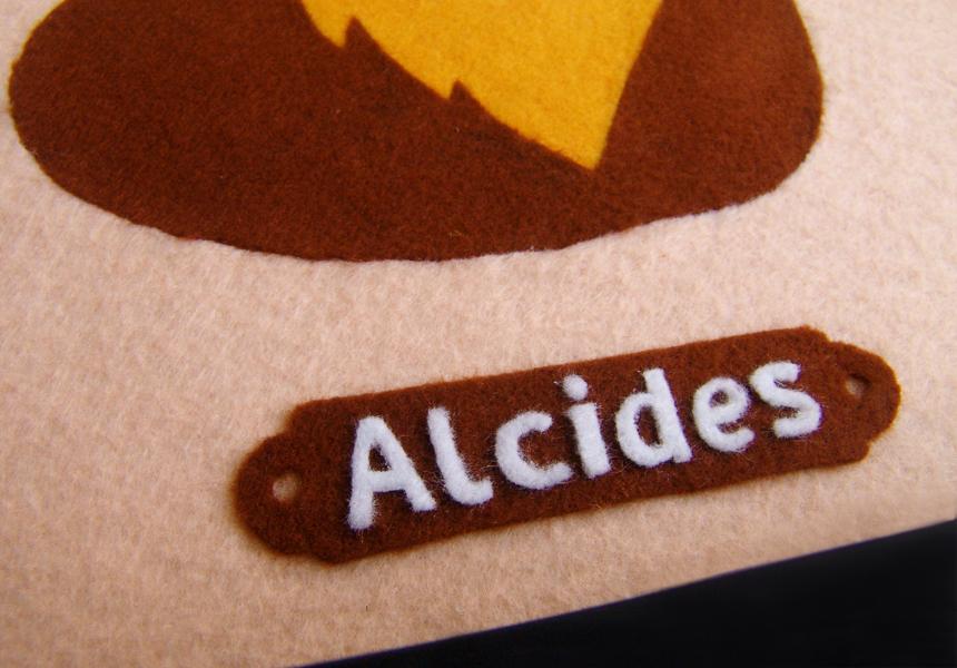 alcides detalhe 1.jpg