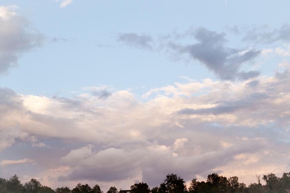 Neverland_28.jpg