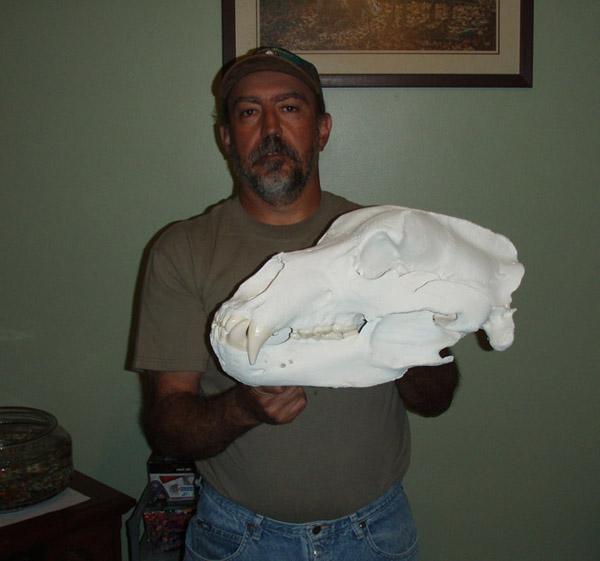 Cy's skull 2 (2) - Copy.jpg