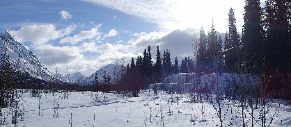 Весенняя охота на медведя гризли на снегоступах.