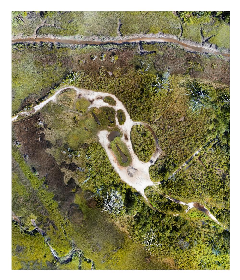 Savannah Marshland Trail