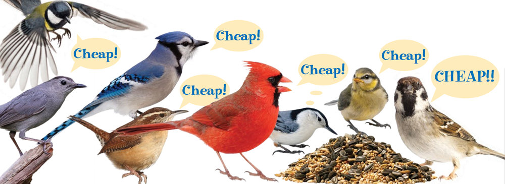 birdseed.jpg