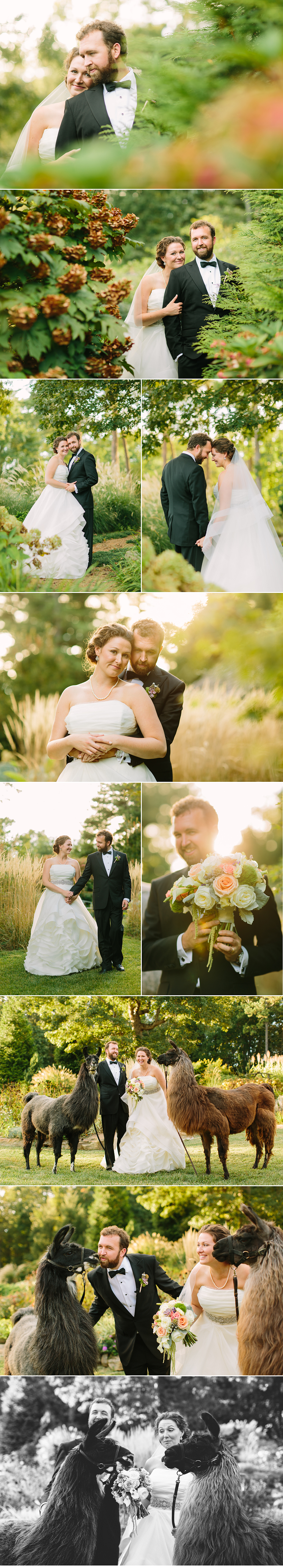 Laurelwood Farm Wedding