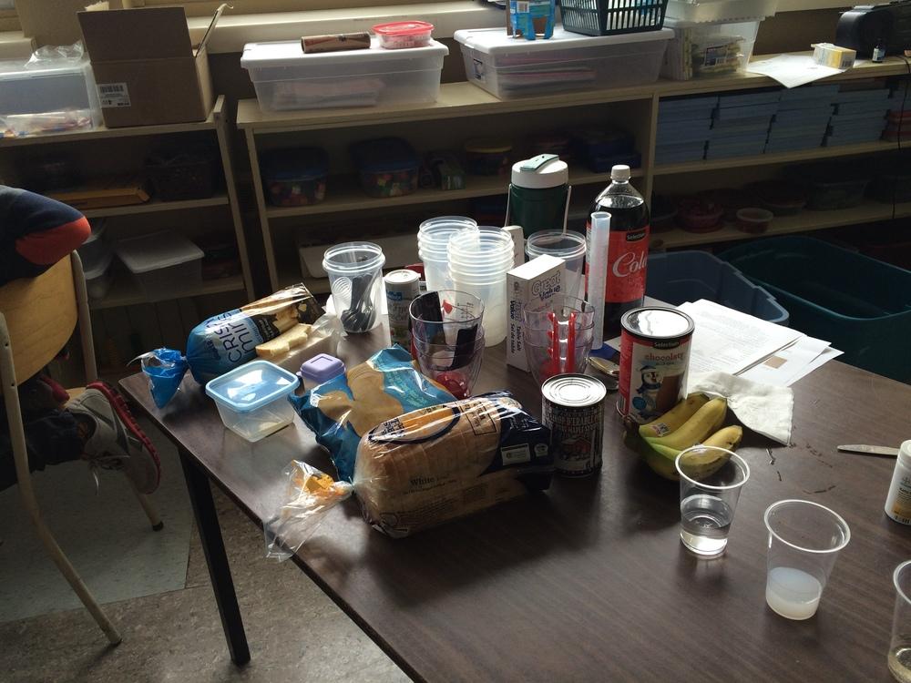 Atelier no 2 : La digestion