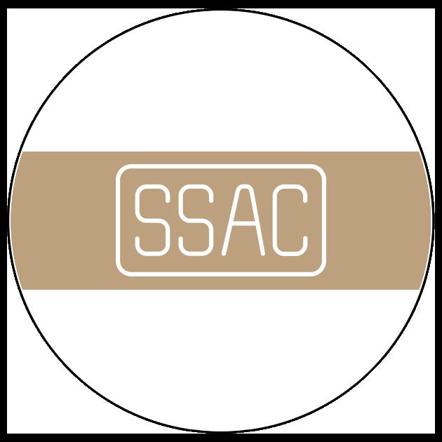 SouthernSunAngelCap.png