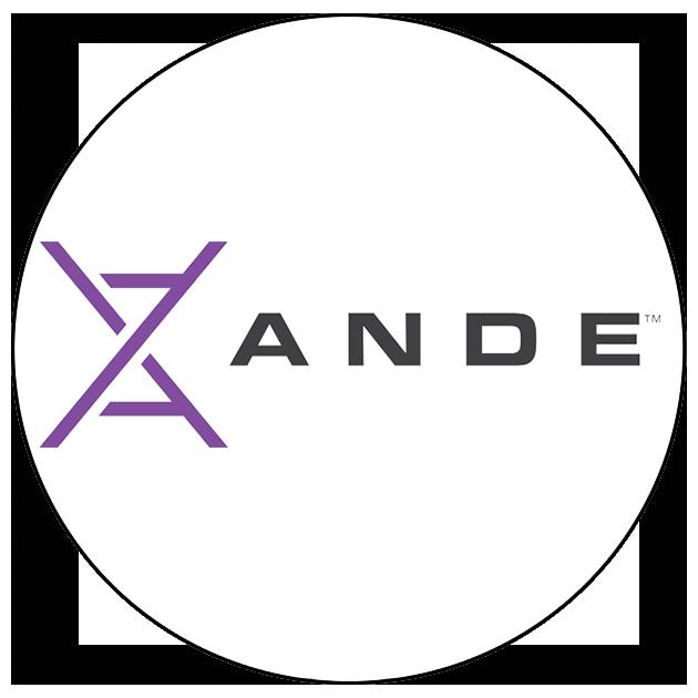 ANDE Website.png