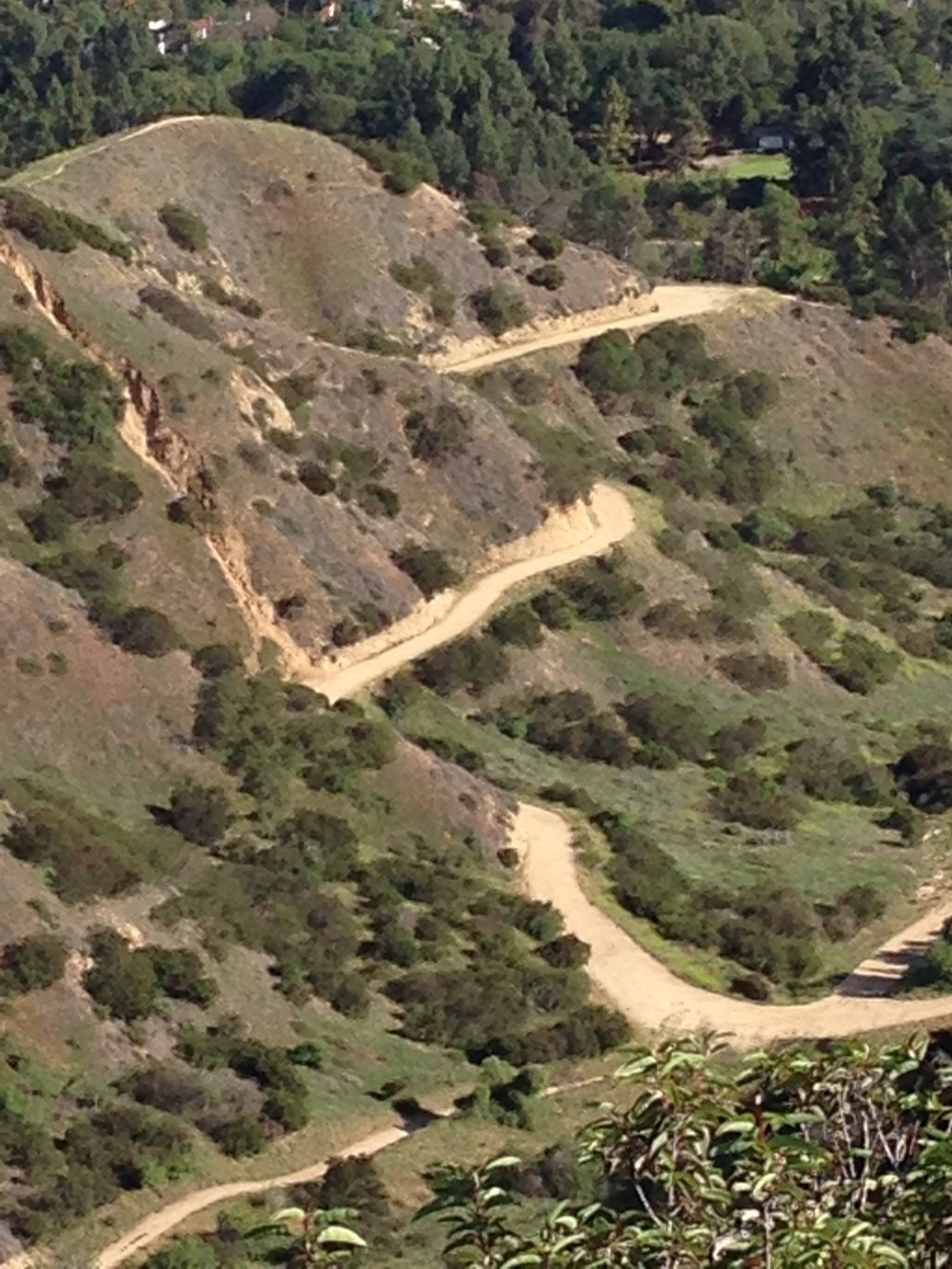 Running Trail Griffith Park - Ultimate Health - Personal Trainer Studio City