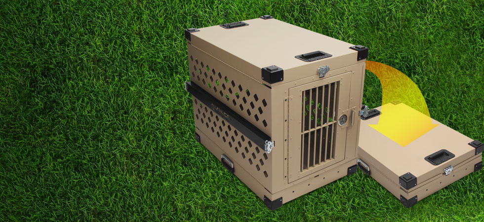 impact case collapsible dog crate