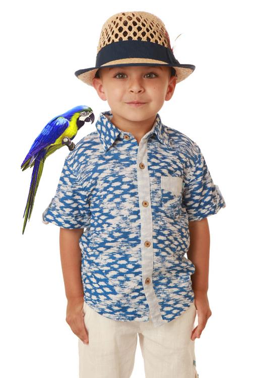 Parrot 2.jpg