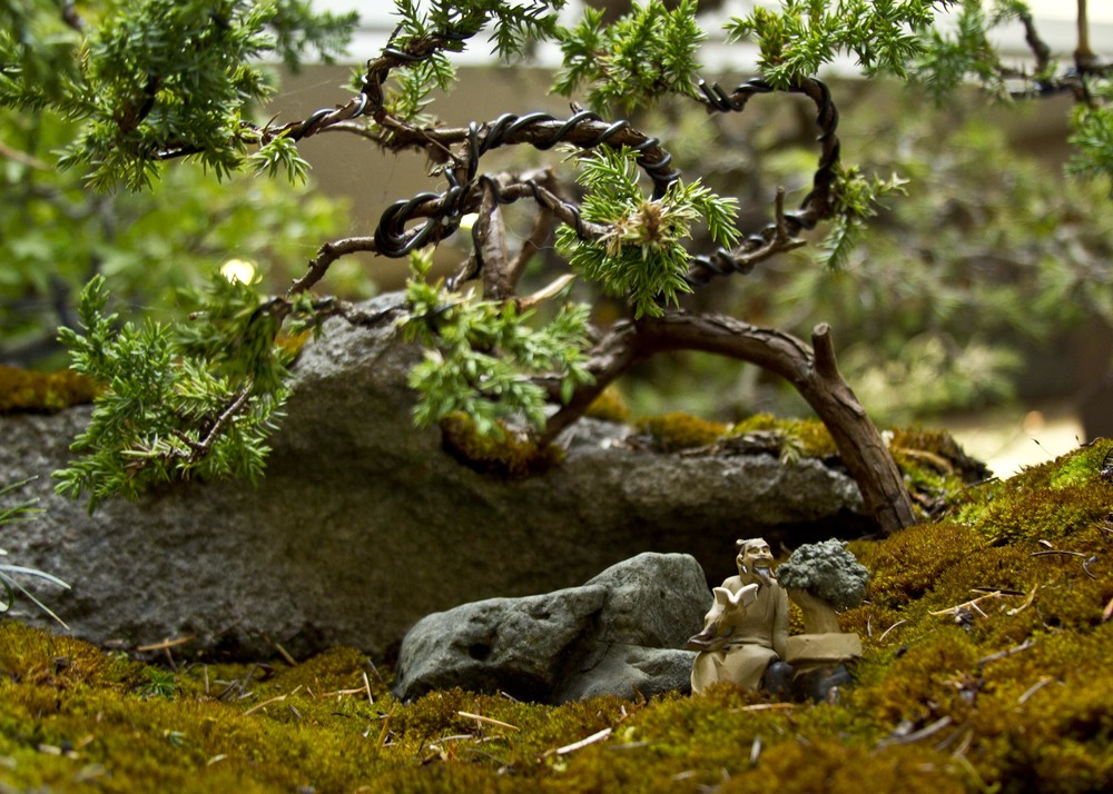 The decorative display at the base of a bonsai tree exhibit, as presented by the Evergreen Bonsai Club during a show at the Kitsap Mall in Silverdale, Washington.