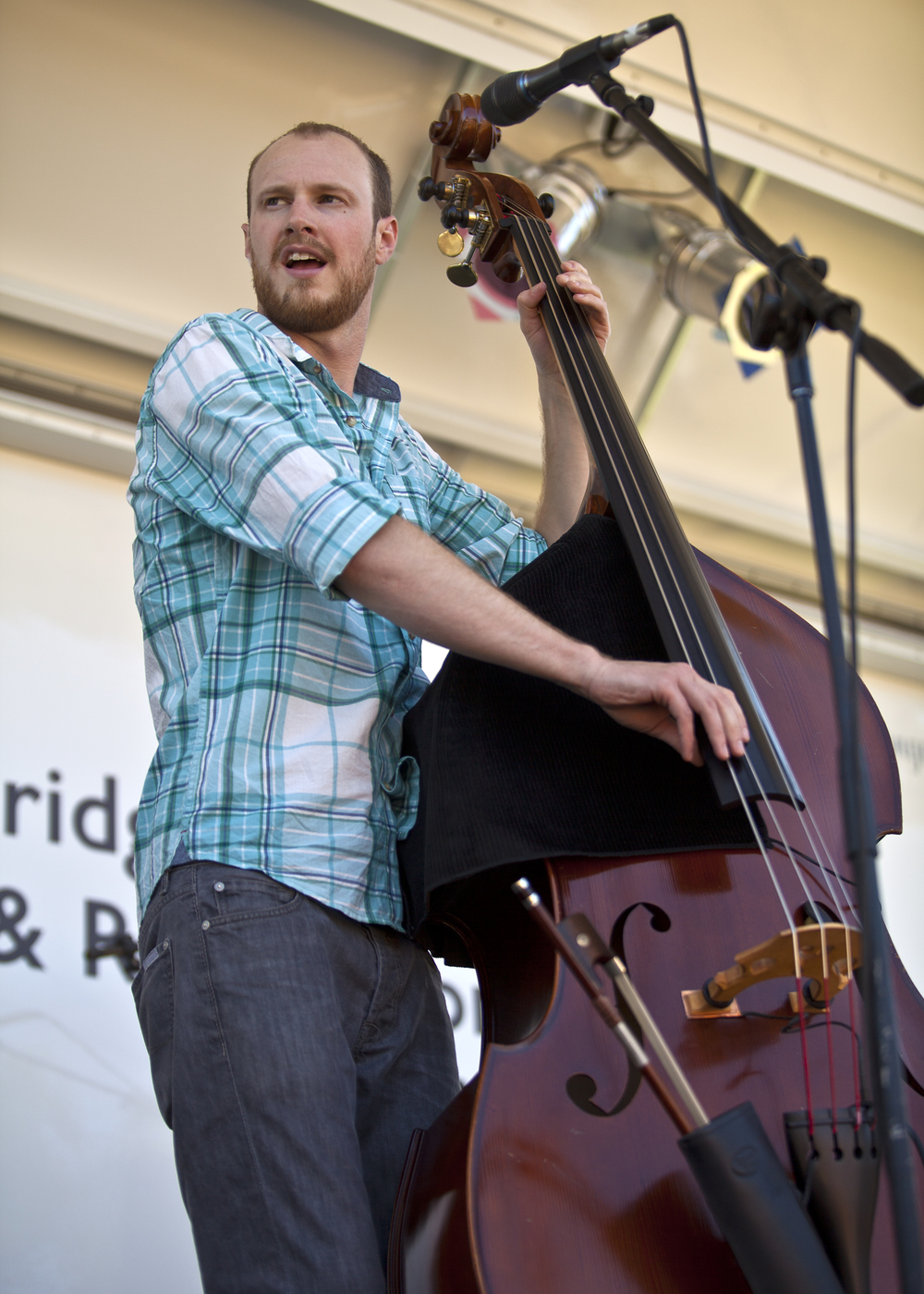Andrew Knapp, bass player of the Warren G. Hardings, at the 2013 Bainbridge Island Bluegrass Festival.