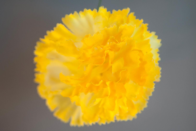 Yellow carnation flower hair clip creative edge llc yellow carnation flower hair clip mightylinksfo