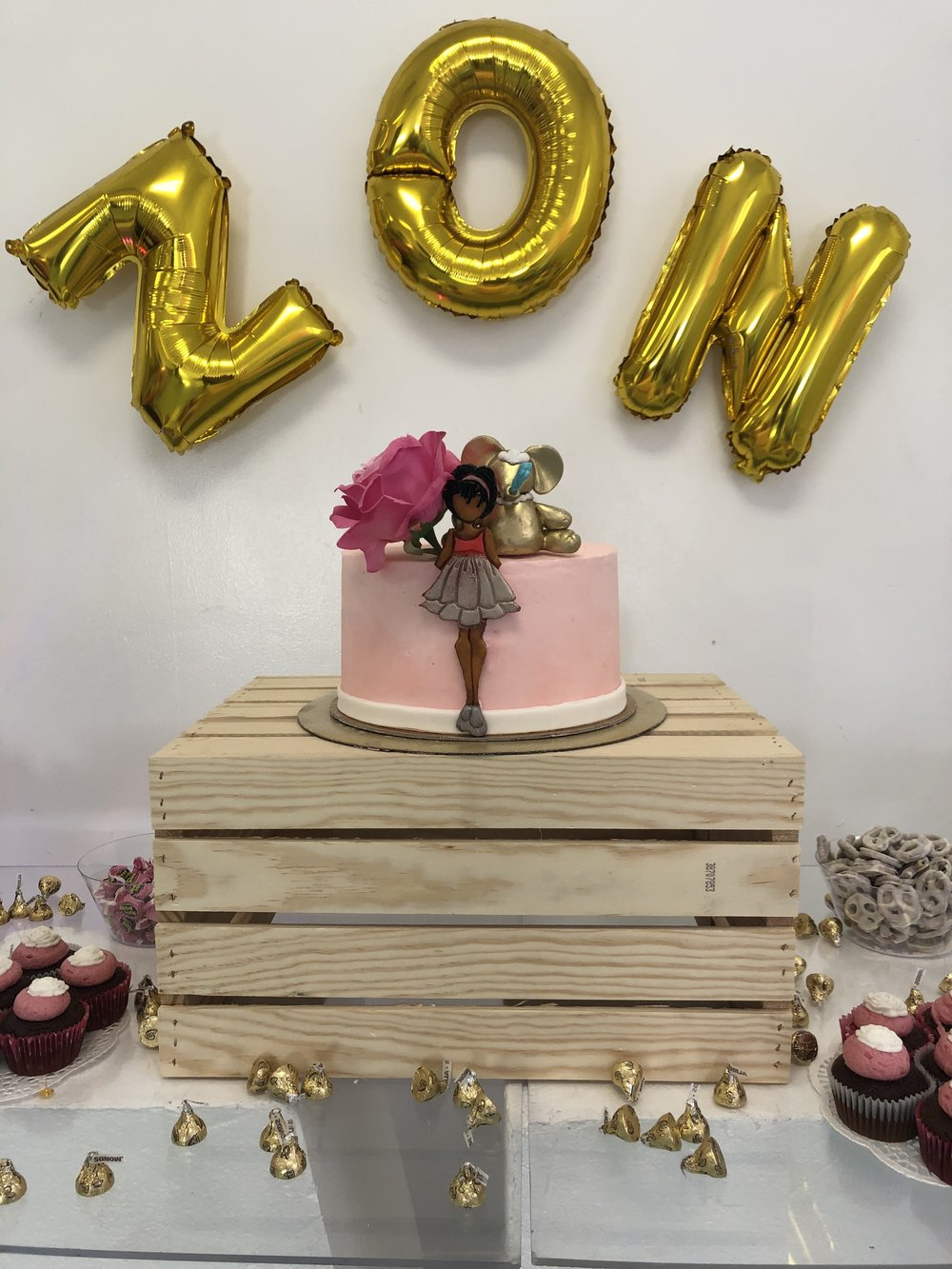 BABY ZON - BABY SHOWER -BROOKLYN, NEW YORK