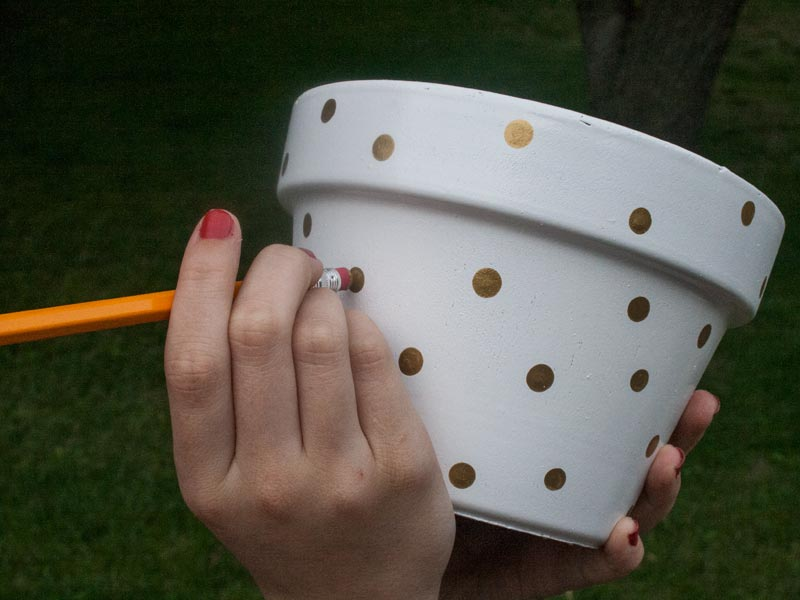 DIY your own polka dot planter.