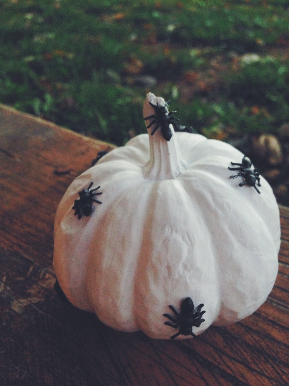 Carving + Decorating Pumpkins. Click through for details.