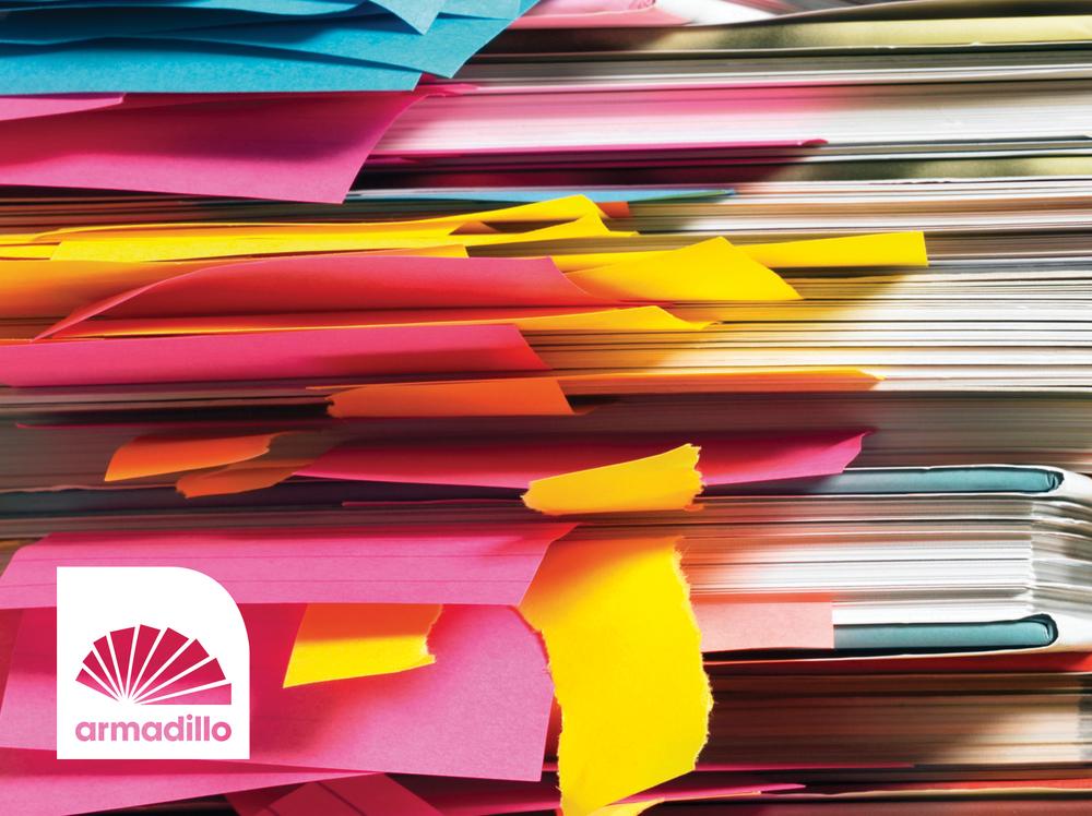 Armadillo 8_1804x1350.jpg