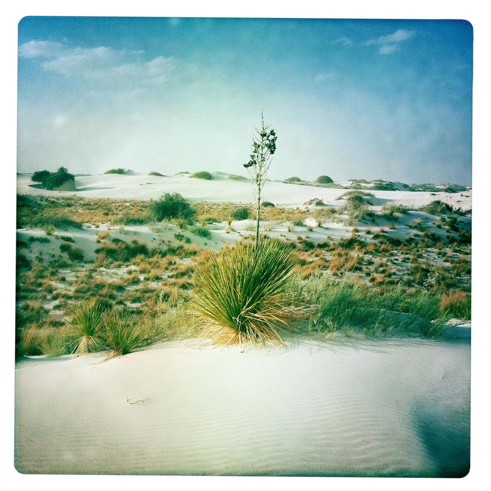 White Sands National Monument outside Alamogordo NW New Mexico