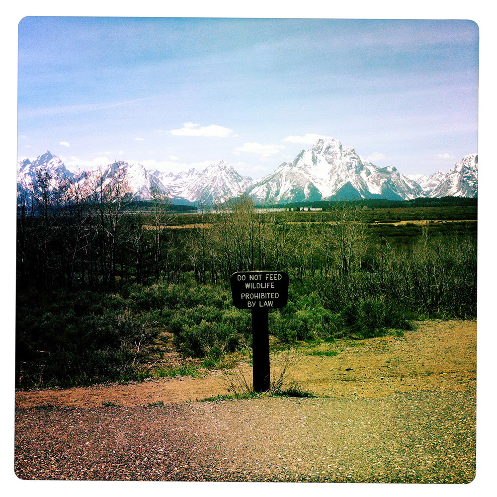 Do not feed animals at the Grand Teton National Park WY Wyoming