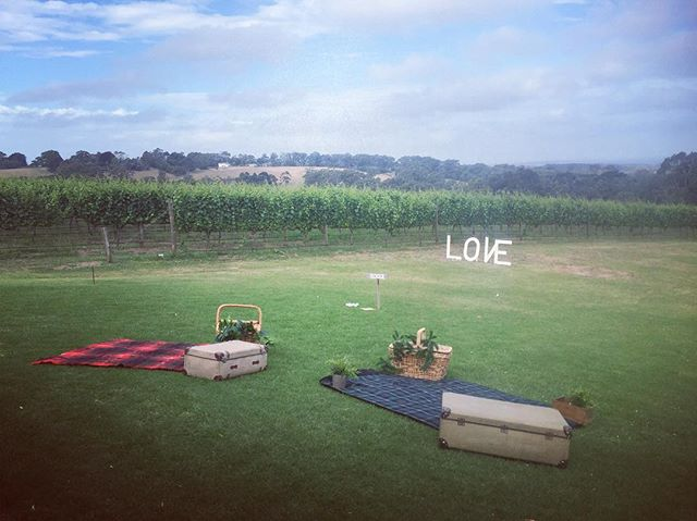 Picnic perfection ~ what an amazing view! | Another shot from a recently styled wedding @maxsrestaurant in Red Hill! #morningtonpeninsula #thecollection #weddingprops #vintageweddingprops #maxsrestaurant #lawngames #redhillestate #weddingstyling