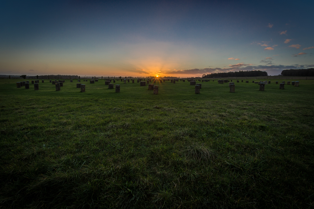 Woodhenge, Amesbury, by Wiltshire Photographer Rick McEvoy
