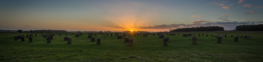 Woodhenge Pano shot