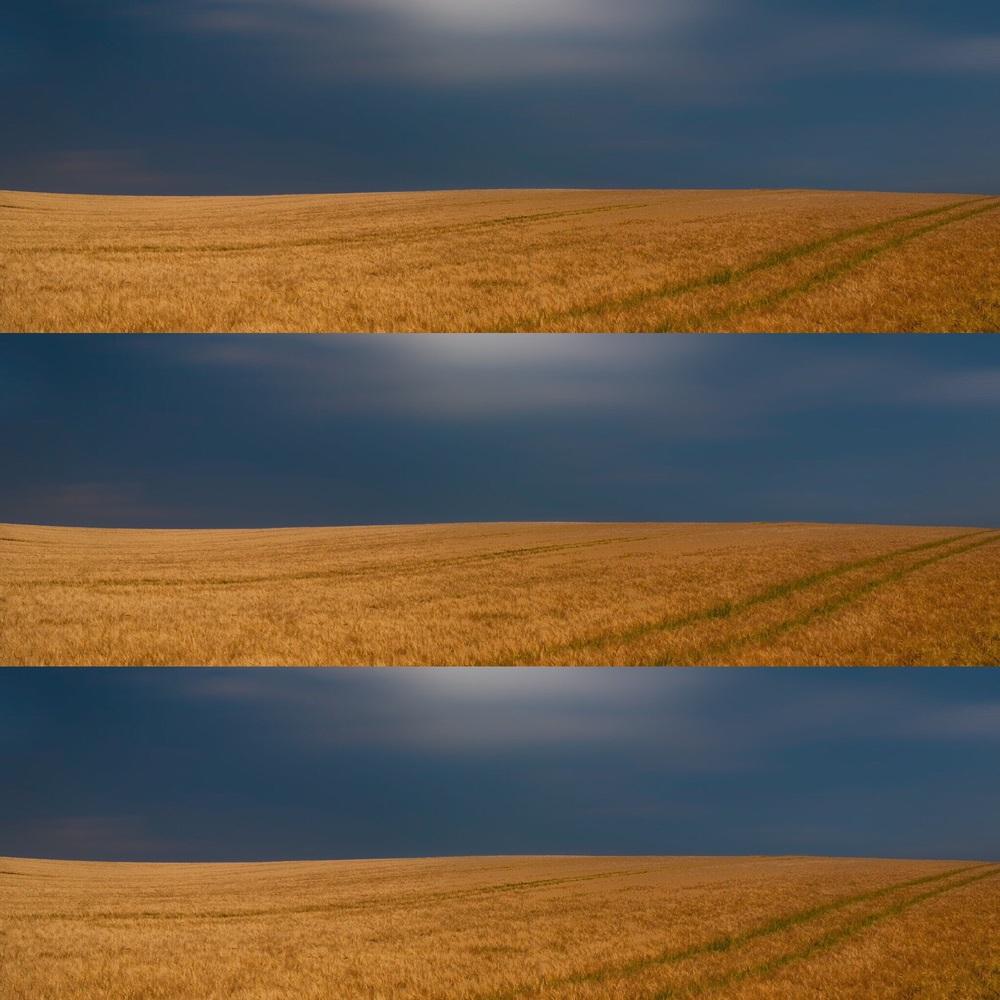 3 Dorset fields Landscape photography in Dorset by Rick McEvoy