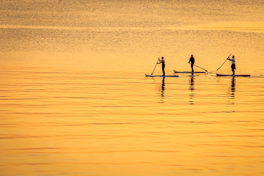 Paddle boarders at sunset, Sandbanks, Poole