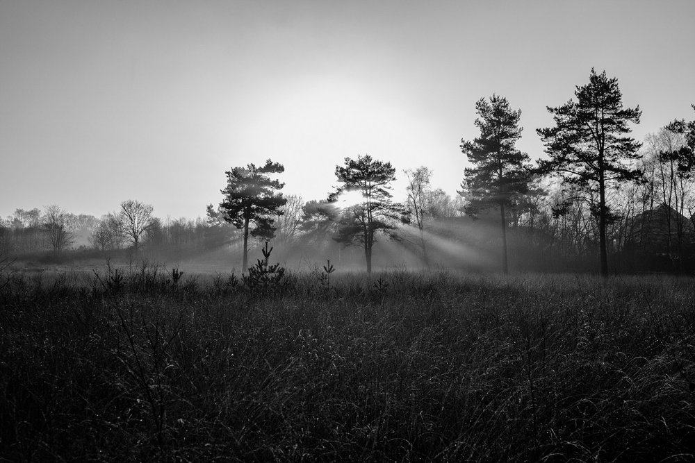 Black and white landscape photography in Poole by Rick McEvoy
