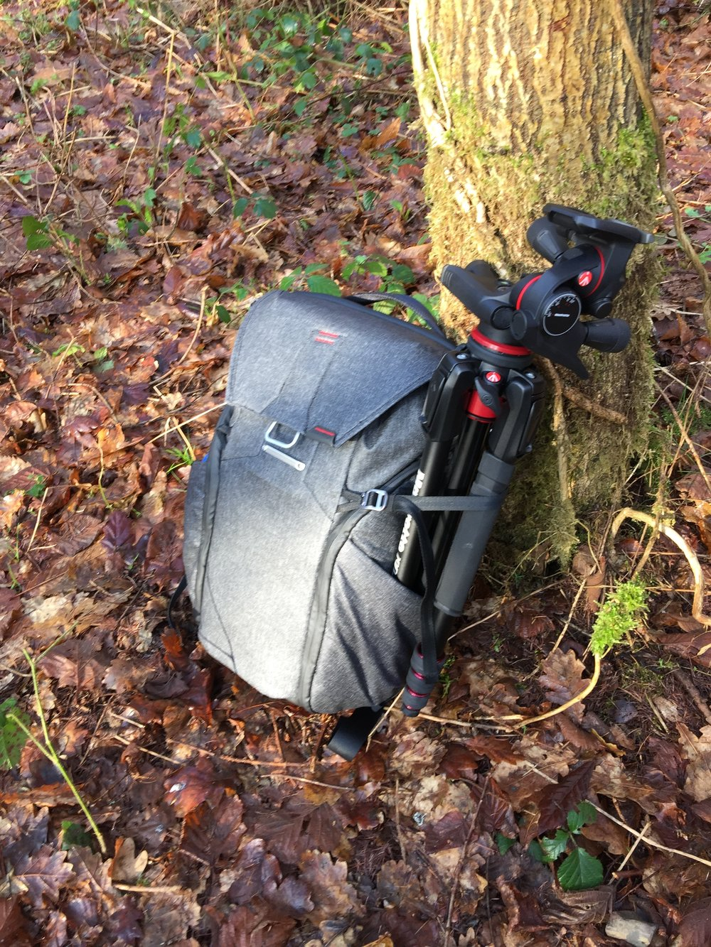 The Peak Design Everyday Backpack with Manfrotto Tripod safely attached