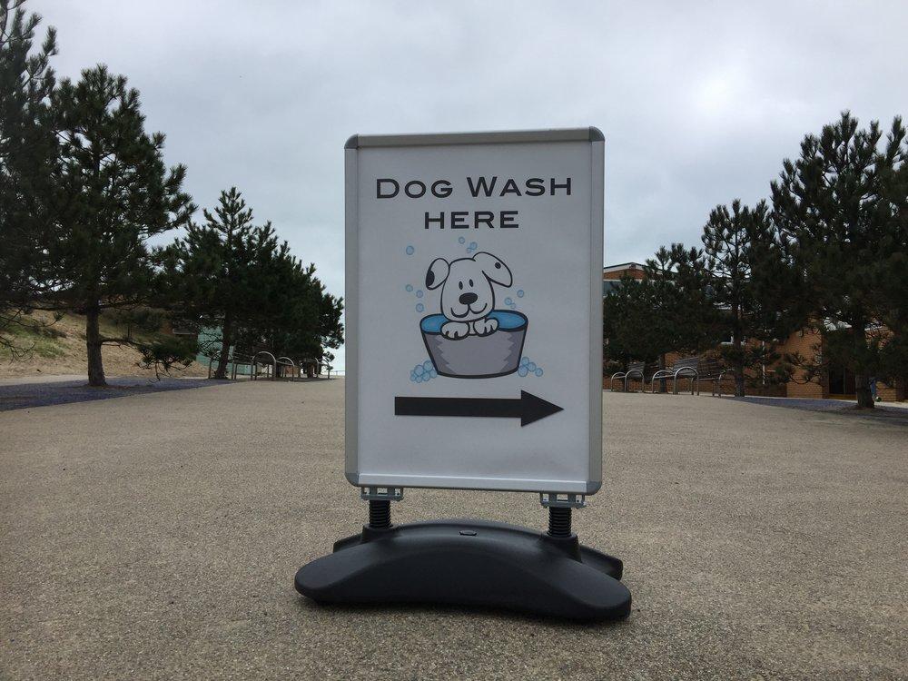 Dog wash by Rick McEvoy Sandbanks Photographer