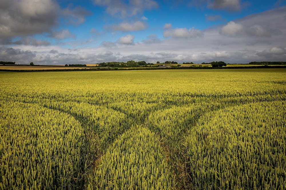Rural scene by Rick McEvoy Dorset Photographer