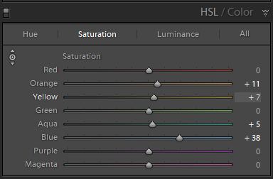 Saturation adjustments in the HSL panel